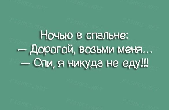 namek-13