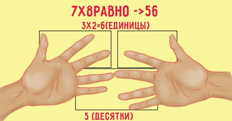 schitaem-4