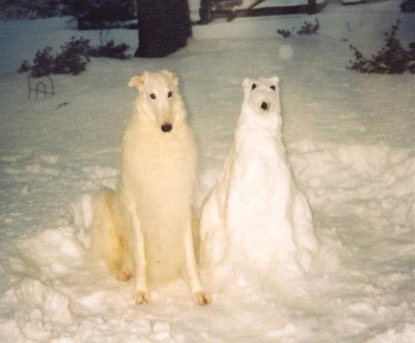 snegovoj-6