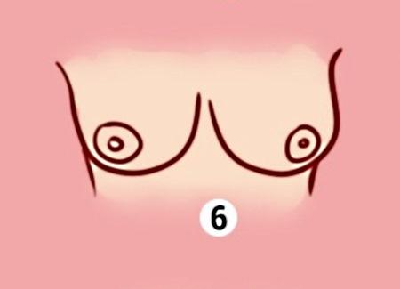 Грудь 6
