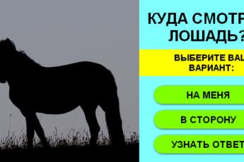 Лошадка 1