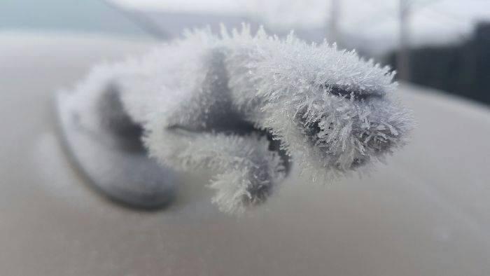 Мороз 5